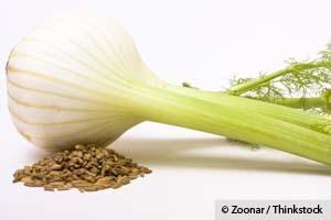 Specially Fermented Vegetables and Fennel are More Effective Than Calcium to Prevent Bone Loss