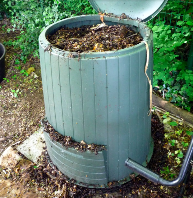 No Time for Your Garden? Here Are Some Solutions