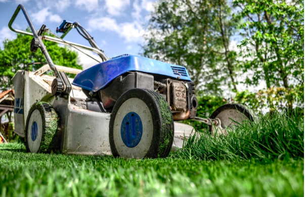 How Green Is Your Garden? Three Vital Tips For a Healthy Home Habitat