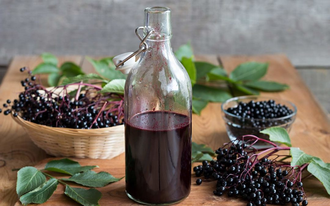 Benefits of Elderberry Syrup & Syrup Recipe